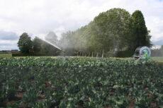 Watertekort en stijgende waterprijzen doet Belgen naar grondwaterput verlangen