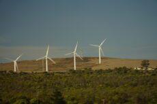 Subsidie voor klimaatadaptieve maatregelen, CO2-reductie en waterstof